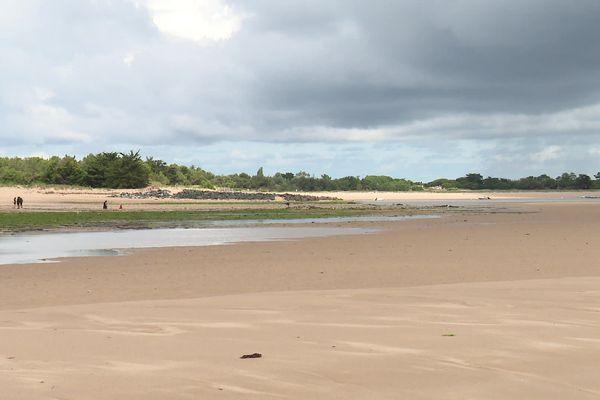 Le banc du Bûcheron sur l'île de Ré