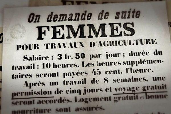 Des milliers de lilloises furent déportées pour travailler dans les champs d'autres régions occupées durant la guerre 14-18