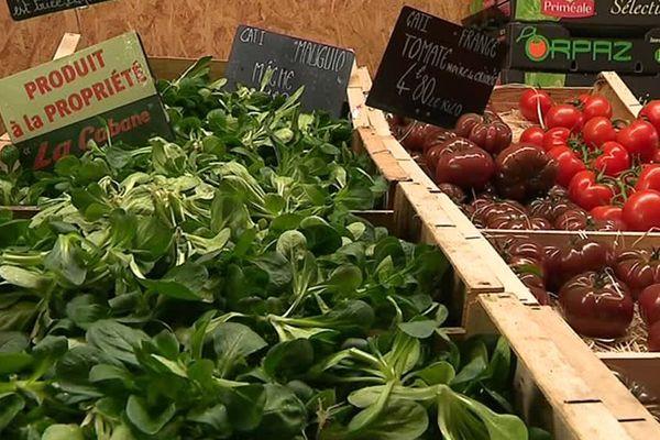 La région Occitanie est leader en conversion à l'agriculture biologique - 20 février 2017