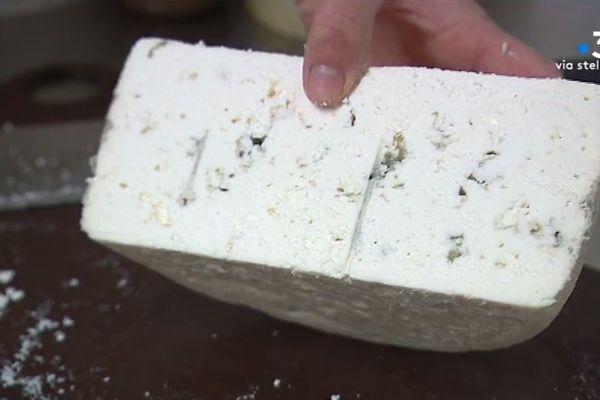 Du Roquefort avec du lait de chèvre, une innovation testée à la fromagerie de Fiore di Latte, à Arbori