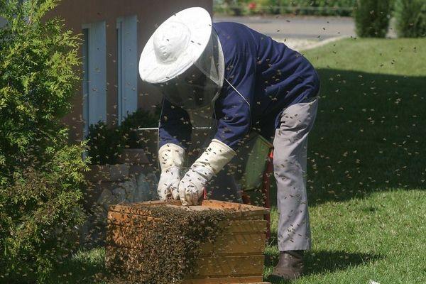 les apiculteurs réclament un plan de soutien exceptionnel.