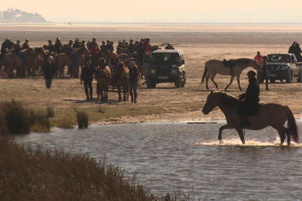 170 chevaux et cavaliers ont participé à la 31e édition de la Trans'Henson.