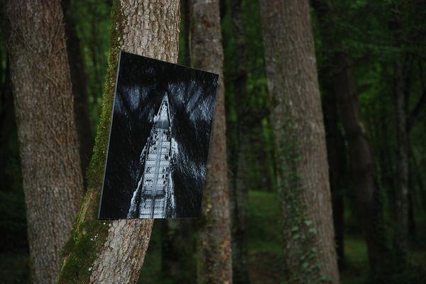 Des instants fugitifs, un focus subjectif qui enrichit notre façon de regarder...