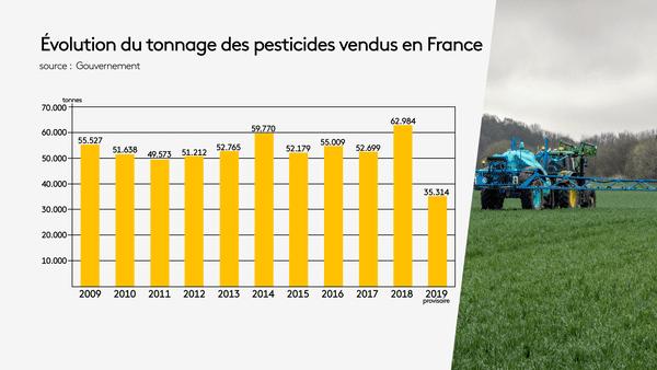 En dix ans, aucune réduction franche de la consommation de pesticides n'a pu être atteinte en France