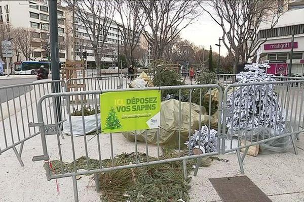 Aire de dépôt de sapins de Noël à Marseille