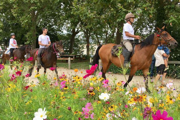 Pour fêter ses 70 ans, François Salliou, agriculteur à la retraite et apiculteur, a voulu organiser une randonnée à cheval militante pour alerter contre l'usage abusif des pesticides.