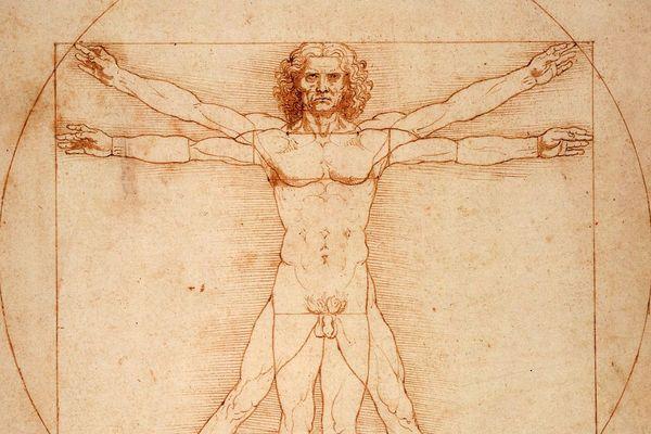 L'Homme de Vitruve, célèbre dessin de De Vinci.