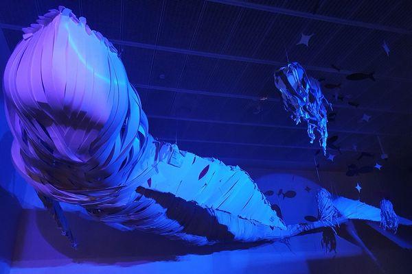 12 mètres et 300 kilos, c'est encore un petit baleineau.