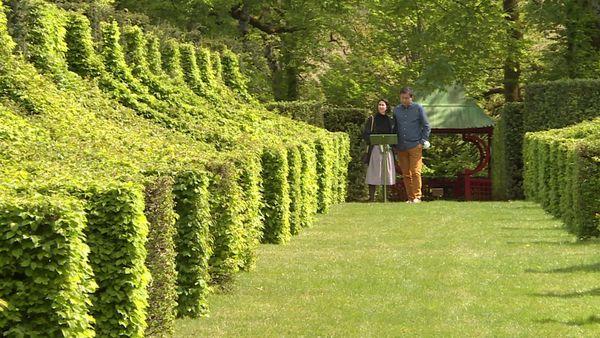 Dans les Jardins d'Eyrignac, seuls les riverains proches, à moins de 10 km, peuvent venir profiter du cadre enchanteur, inhabituellement calme