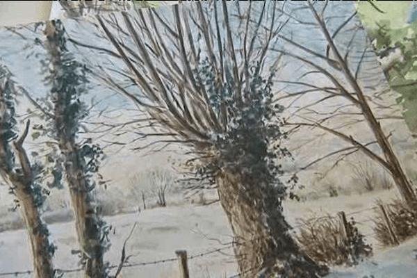 Dessin d'arbres de Dominique Mansion