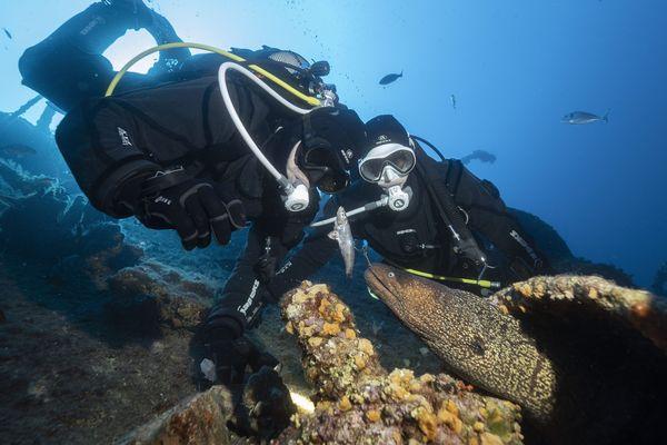 Face au risque de pénurie de matériel, les plongeurs offrent leurs kits d'urgence d'oxygénothérapie aux EHPAD.