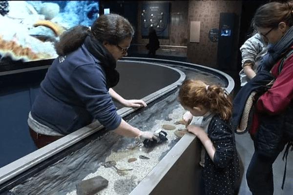 Au Minilab, les scientifiques mettent à la disposition des visiteurs leur savoir-faire et leurs outils.