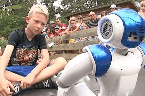 Le robot Nao à la vallée des tortues à Sorède, dans les Pyrénées-Orientales - 24 août 2015