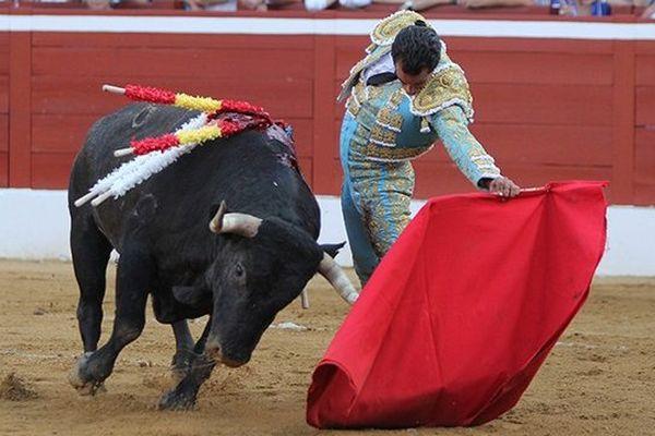 Ivan Fandiño, une à une les naturelles, savoir trouver le tempo pour que les toros de Santacoloma ne soient jamais brusqués. Et deux estocades somptueuses pour ceux qui n'auraient pas encore compris que l'épée, c'est aussi du toreo