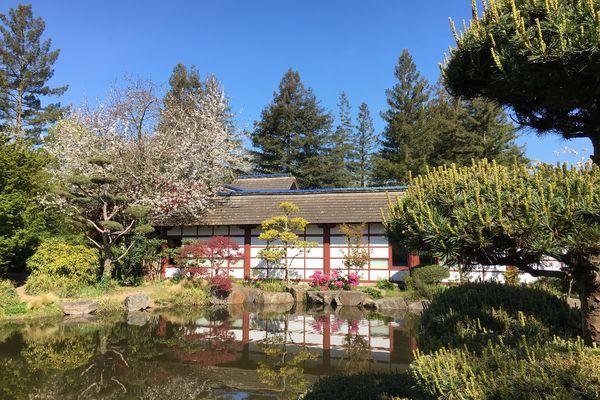 Le jardin zen est situé sur l'île de Versailles à Nantes
