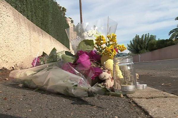 Sauvian (Hérault) - Des fleurs sur le lieu où a été retrouvé le corps du garçon de 12 ans poignardé - 26 septembre 2016.