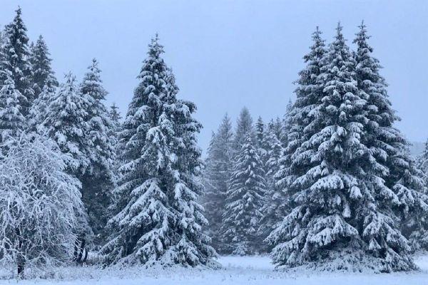 En Auvergne, la neige est tombée en ce matin de Noël, les routes sont difficiles d'accès. Il convient de rester prudents.