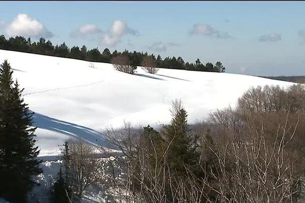 Forêt et neige entre Prat Peyrot et le Mont Aigoual, à la frontière du Gard et de la Lozère. 19/02/2017