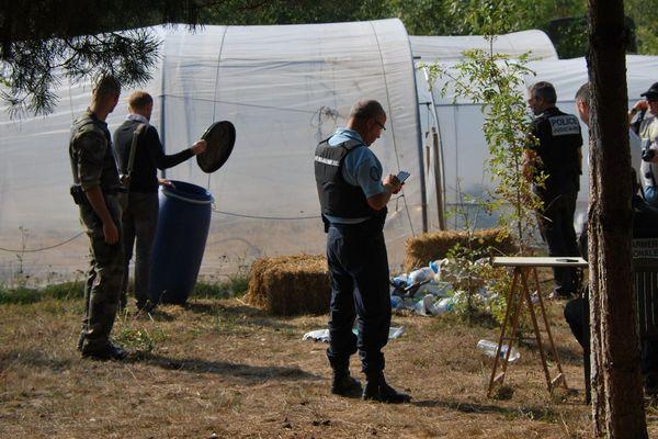 Les gendarmes de Loire-Atlantique enquêtaient depuis près de 4 mois, la culture de cannabis couvrait environ 800 m2.
