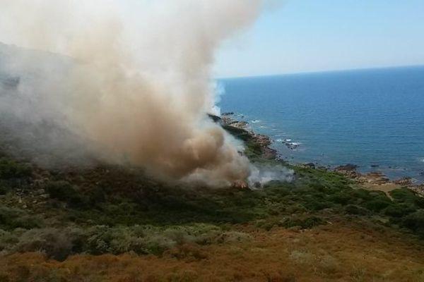 28/06/14 - Feu de maquis à Pevani en Corse-du-Sud