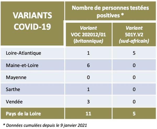 Les chiffres de l'épidémie de covid-19, variant anglais, dans les Pays de la Loire le 2 février 2021