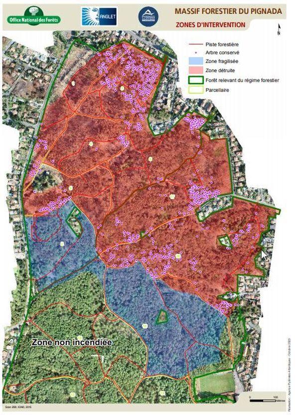 La partie rouge représente la zone de 40 hectares ou les arbres sont trop fragilisés. La plupart seront abattus, sauf 1103 arbres identifiés par les points roses.