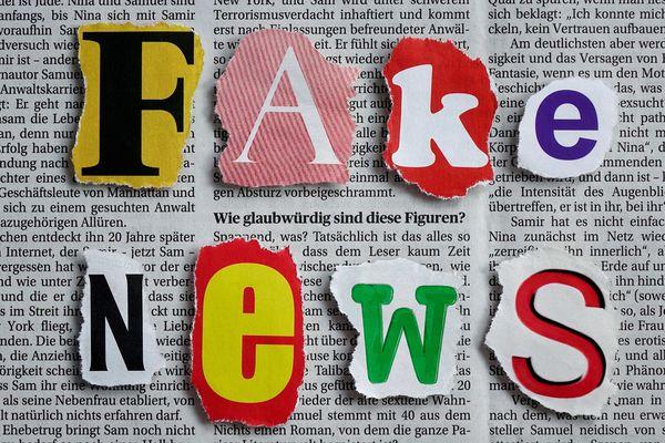 """La loi contre les """"fake news"""" a été adoptée mais passera devant le Conseil Constitutionnel."""