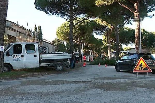 La Grande-Motte (Hérault) - coupe d'une trentaine de pins dans le quartier des pins - 27 novembre 2018.