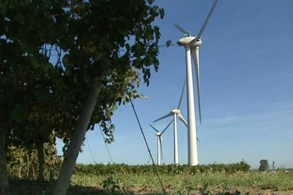 Canet (Aude) - 5 éoliennes raccordées au réseau - 24 octobre 2012.
