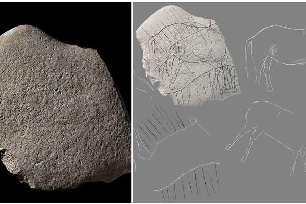 Voici la plaquette de grès sur laquelle figurent un cheval et quatre autres herbivores, associés à un décor géométrique.