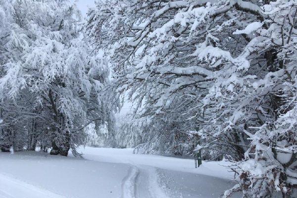 A Super-Besse (Puy-de-Dôme), la neige tombée en ce début du mois de décembre a créé une couche épaisse de poudreuse sur la station.