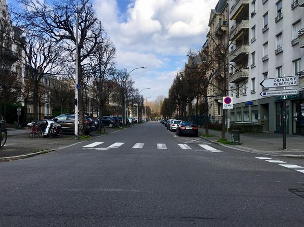 Allée de la Robertsau sans voiture, le 17 mars, jour du confinement
