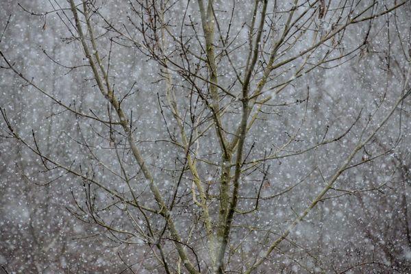Flocons de neige et verglas à prévoir pour ce lundi.