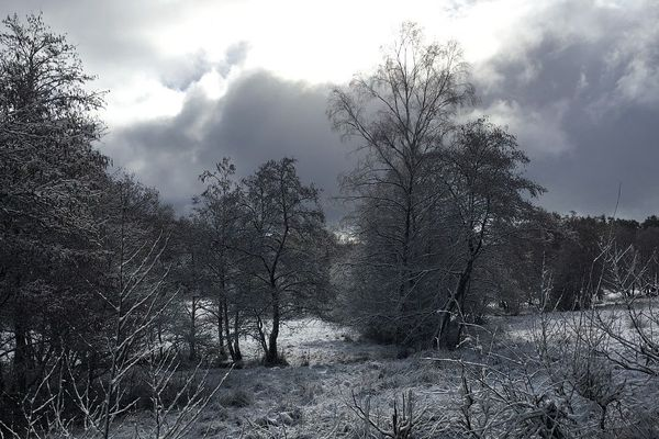 La neige est tombée sur le plateau de Millevaches