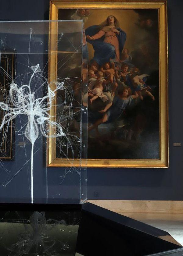Les Jardins Intérieurs, exposition de Marjolaine Salvador-Morel au musée des Beaux-Arts et de la Dentelle