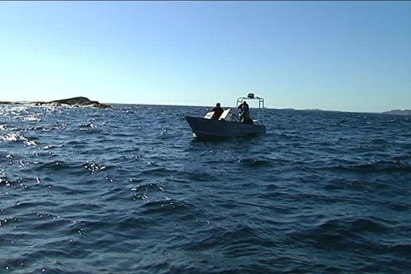 En plein Atlantique Nord, dans des eaux à 12°, le nageur franc-comtois a rallié l'île verte canadienne à l'île française de Saint-Pierre