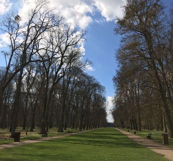 Le parc de la Colombière à Dijon