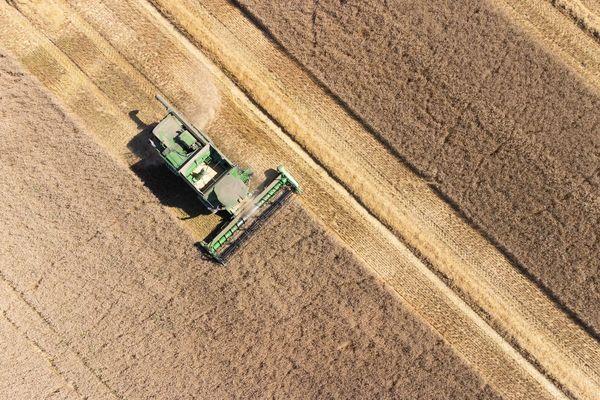 Rendement céréaliers plafonnés, phénomènes extrêmes, gel : le nombre de défis auxquels doivent faire face les agriculteurs ne fait qu'augmenter