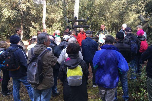 Dans le cadre de la Journée Internationale des forêts on pouvait découvrir avec des guides celle de Notre-Dame-de-Monts en Vendée