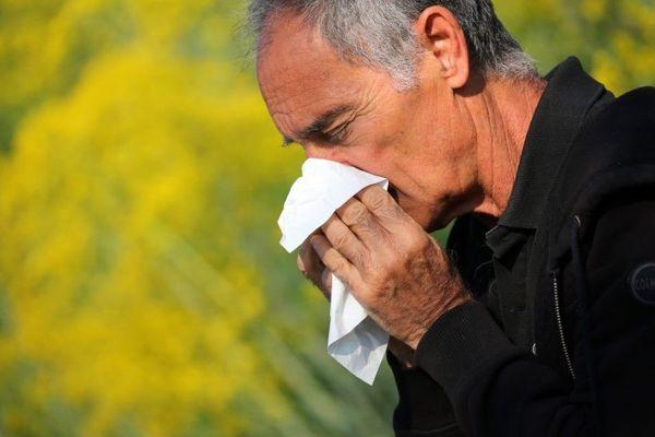 """Eternuements, nez qui coule… Le risque d'allergie aux pollens est classé """"élevé"""" ou """"très élevé"""", selon les départements franciliens (illustration)."""