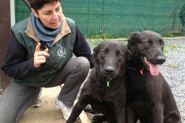 Sabrina, la responsable de l association LISA, et deux chiennes à adopter, Patoune et Doudoune, 1 an et sœurs donc inséparables.