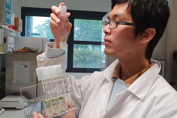 Huu Trong Nguyen dans son laboratoire