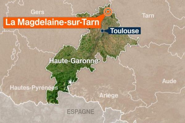 À La Magdeleine-sur-Tarn, en Haute-Garonne, plusieurs arbres sont tombés sur des lignes électriques à la suite de l'orage.