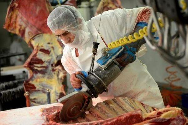 Un ouvrier travaille dans l'un des abattoirs d'une société roumaine exportatrice de viande chevaline en Europe, le 12 février 2013