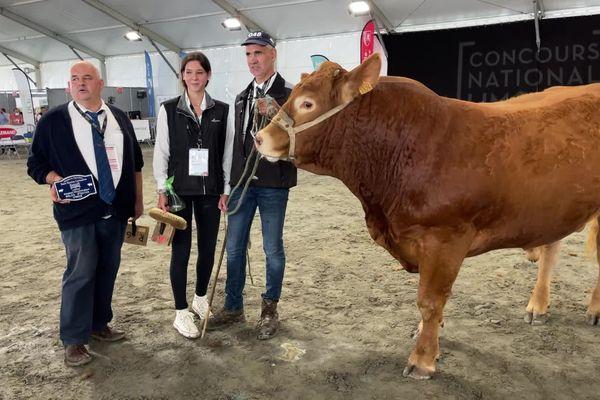 Relax, du GAEC Lasternas, premier prix dans la catégorie « jeune mâle âgé de 19 à 23 mois » au Concours National Limousin