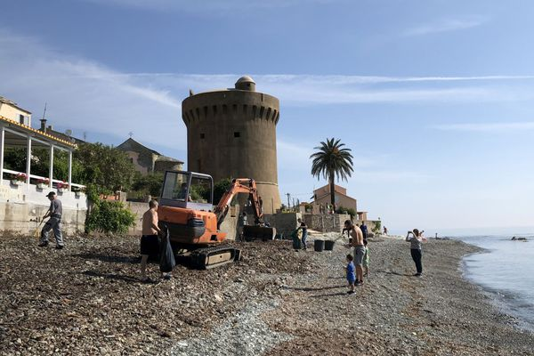 26/05/2018 - Samedi matin, la mairie de Santa-Maria-di-Lota (Haute-Corse) organisait le nettoyage de sa plage avec l'aide de bénévoles.