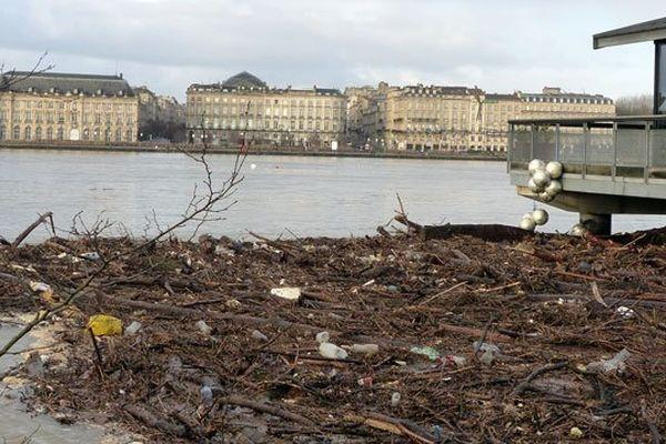 La Garonne a charrié de nombreux déchets comme ici devant le restaurant sur pilotis du Quai de Queyries à Bordeaux, le 2 février 2014
