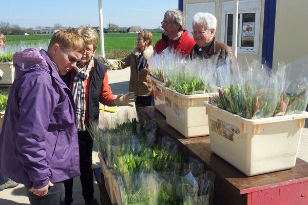 Les bénévoles récoltent un don en échange d'un bouquet de tulipes