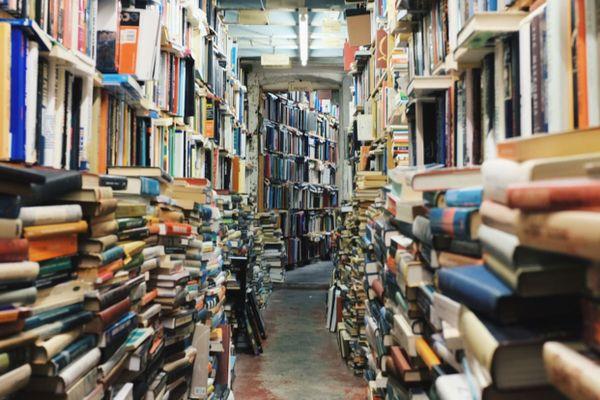 Des centaines de milliers de documents peuvent être empruntés en quelques clicks dans les bibliothèque de Bordeaux (image d'illustration)