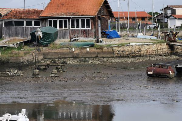 La vase s'amoncelle sur le port de la Teste-de-Buch.